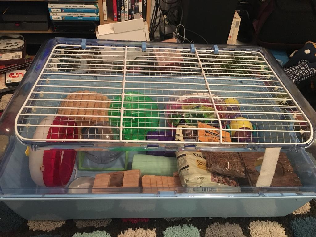 Best Dwarf Hamster Cages