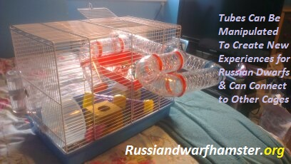 Buy Ferplast Hamster Cage