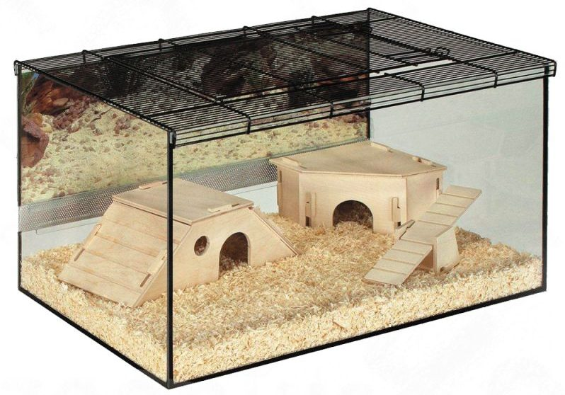 Glass Dwarf Hamster Cage