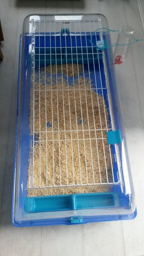 Cheap Dwarf Hamster Cage